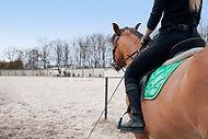 Mujer montando un caballo