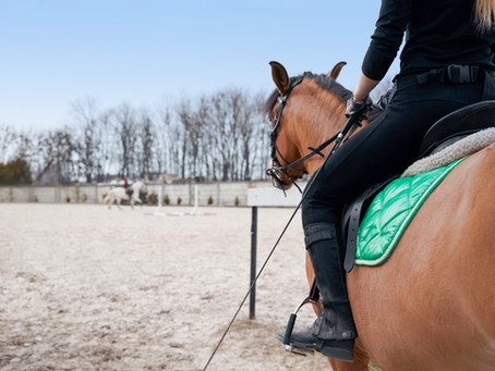 """I was looked down at because I didn't have a flashy horse and I always wore a body protector"""