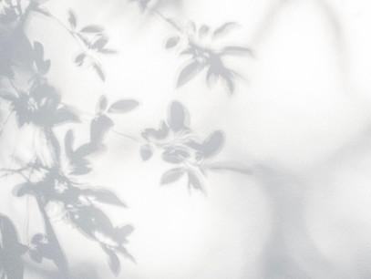 Mystikal Dem Dikk : Orgueil