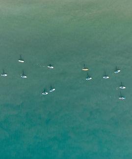 Birds Eye Surfers