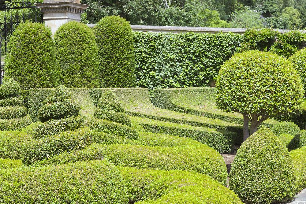 Symbolbild Garten