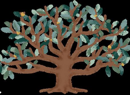 Meditación guiada: El árbol encantado