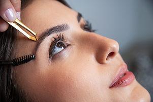 Best Eyebrow Shaping Denver Signal Beauty