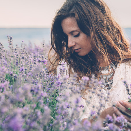 The Benefits of Lavender Essential Oil