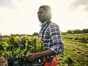 New Group Aims to Advance Black Policy Professionals in Food and Ag - Agri-Pulse