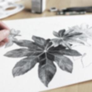 葉のスケッチ