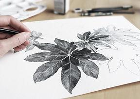 Рисунок листьев
