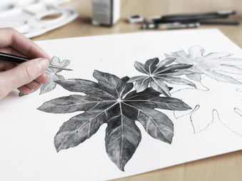 Learning to live is like learning to draw