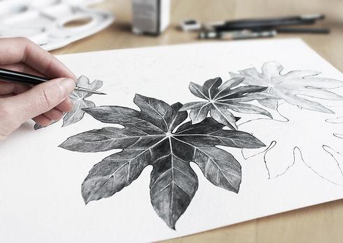 Blätter zeichnen