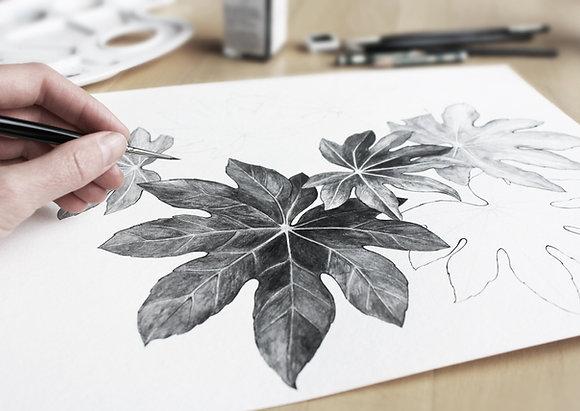 Drawing/Sketching Kit