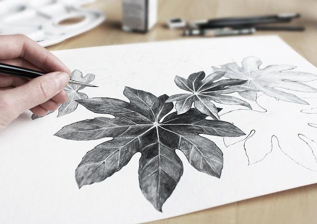 Dessin de feuilles