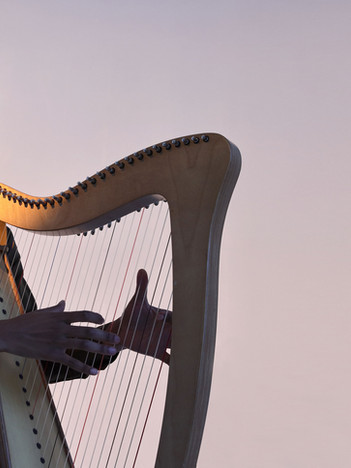 Harpist, Trios, Quartets, Quintets
