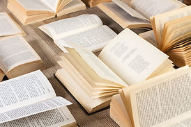 Surtido de libros