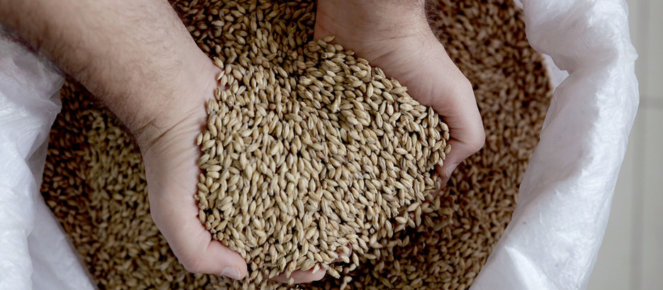 Dietary Fibre - Why It's So Important