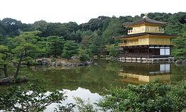 Pond Landscape Reflection