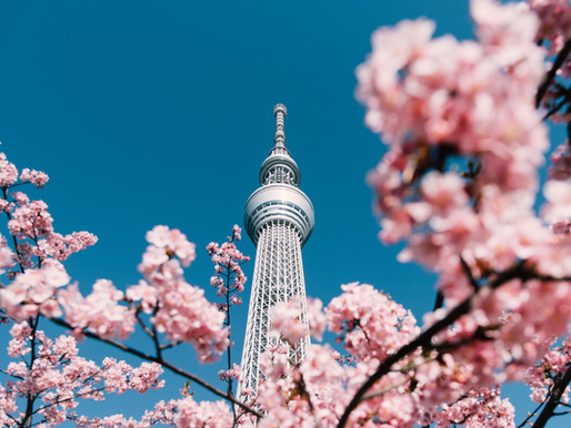 A Famed Garden in Tokyo Near the Bay
