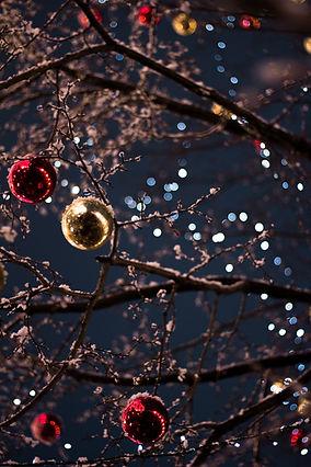 霜の降りたクリスマスオーナメント