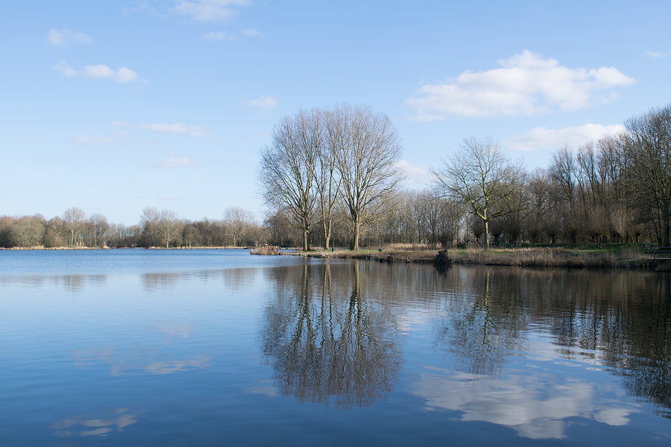 location bord du lac