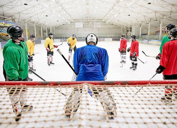Хоккейный спортивный тренировочный центр   финансовая модель бизнес плана