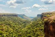 Nature Views