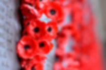 Memorial Poppies
