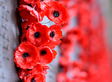 Join us in decorating the West End Poppy Tree