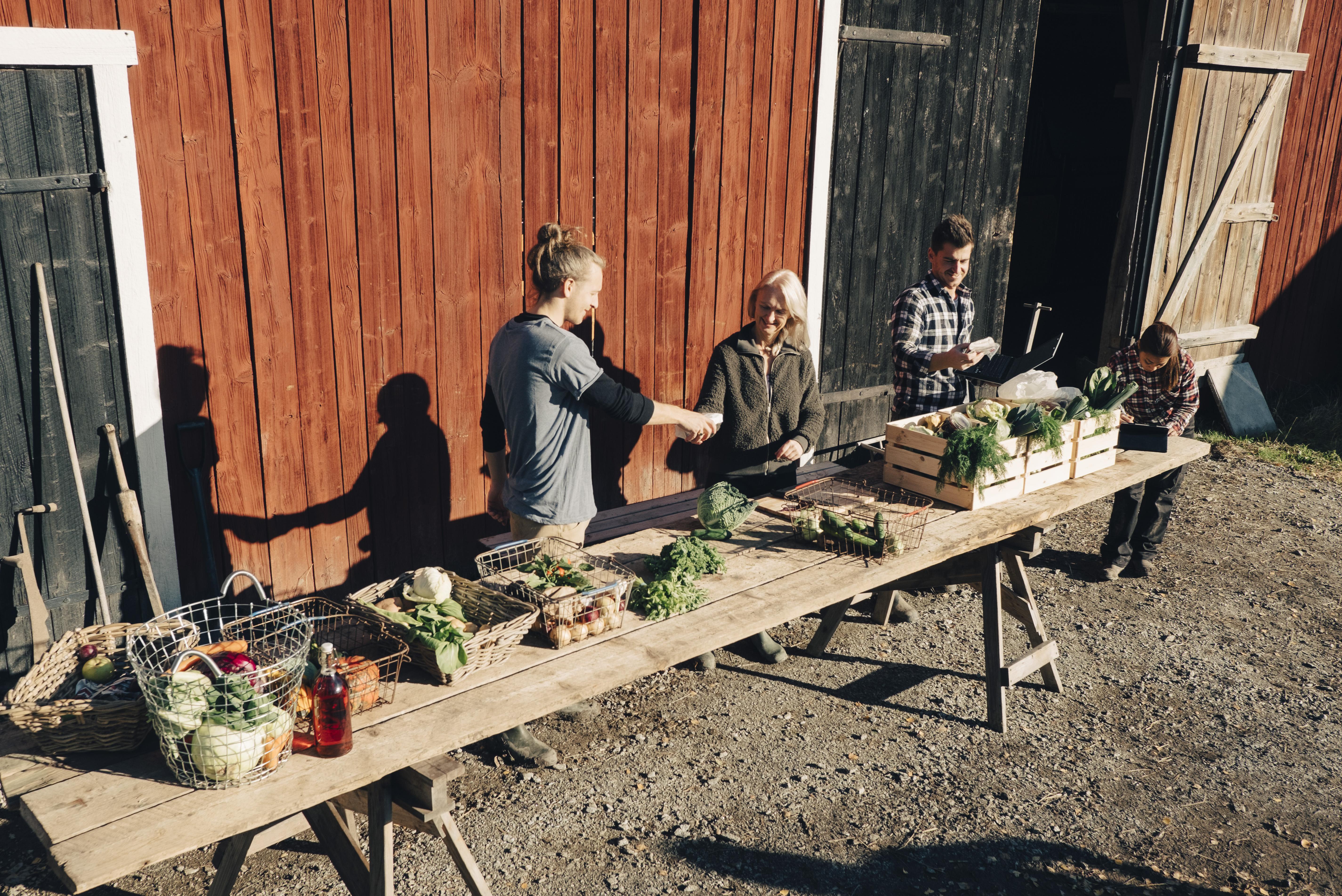 野菜を売る農家