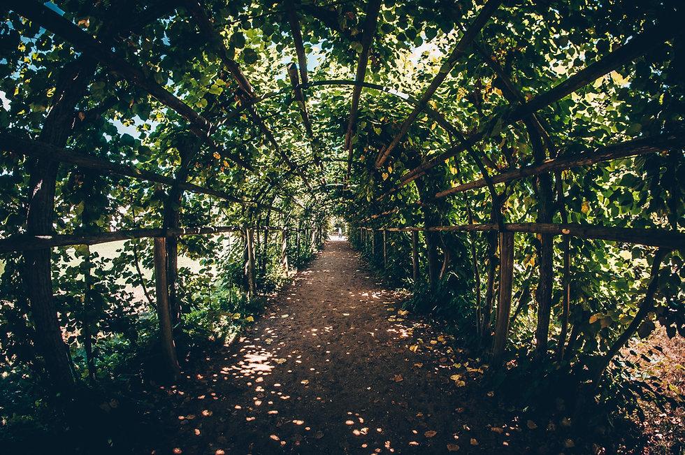Brücke voller Pflanzen