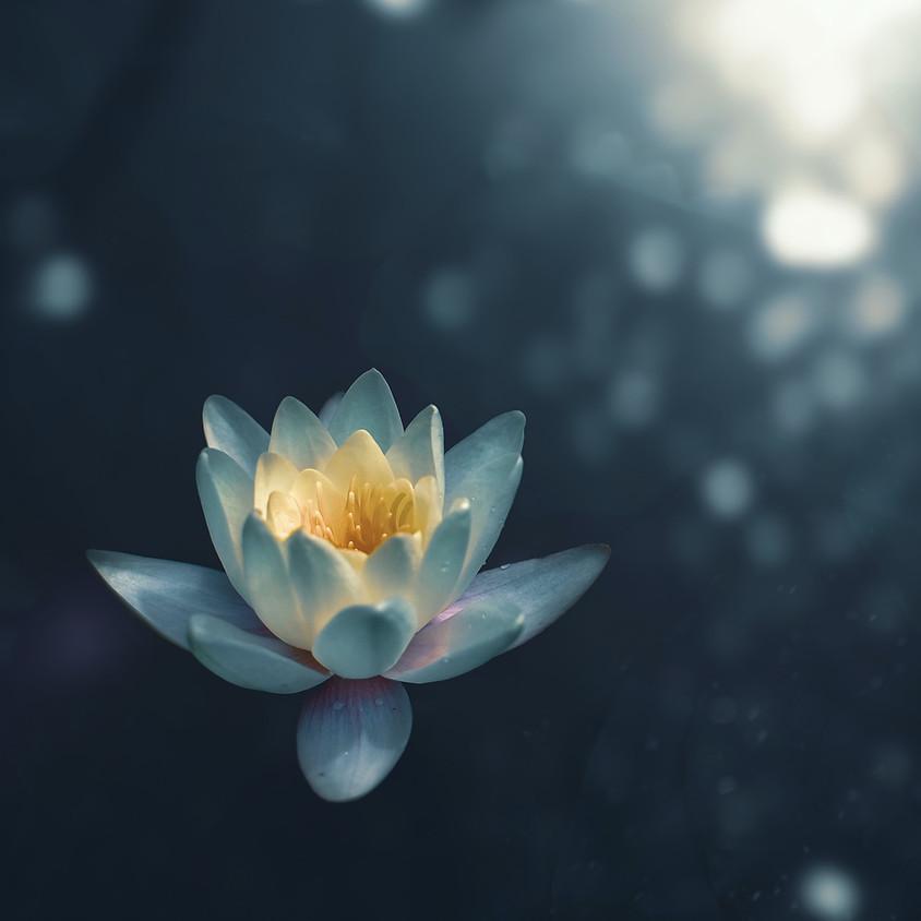 CELEBRATION HEART MEDITATION: Nursing your Inner Being