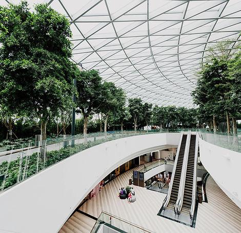 Green Indoors