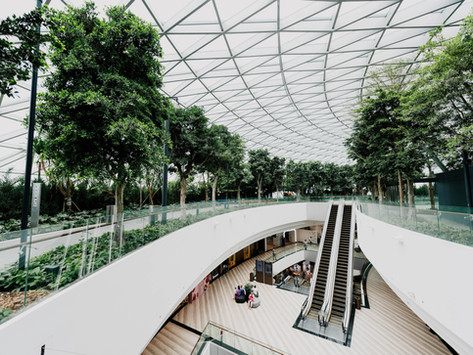 Forward looking and flexible: How Singapore is setting the stage for digital asset innovation