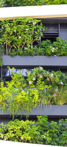botanical-wall