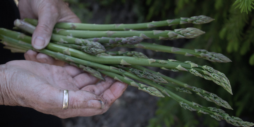 (SOLD OUT) SPRING FORAGE & FEAST