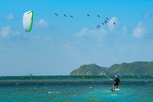 Kiting With Birds