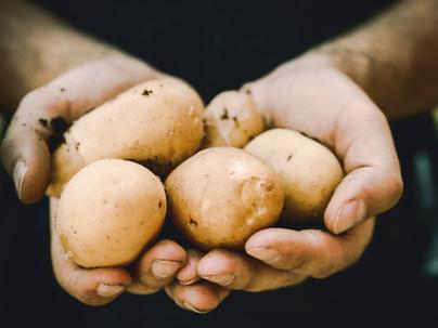 Food Stats: Potatoes