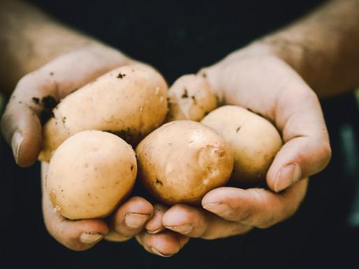 Challah Baking Secret: Potatoes Can Do That?!