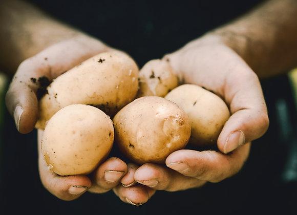 Batata branca Bio . 1 kg