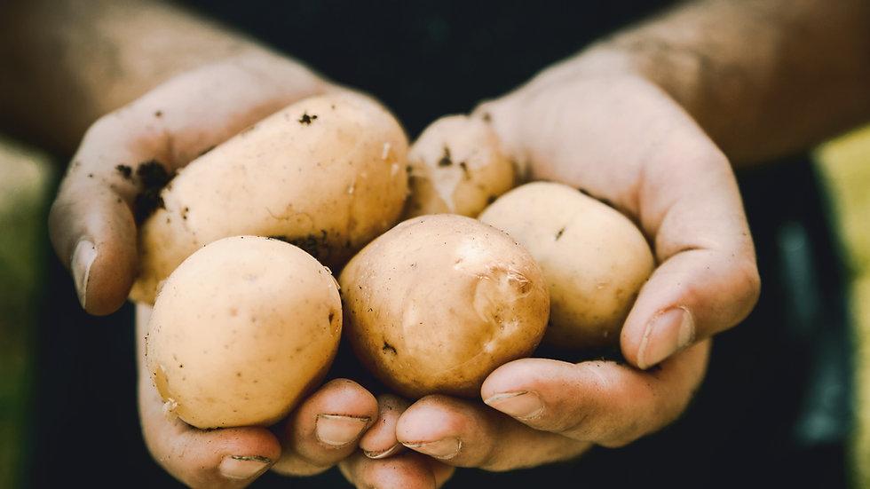 Small sack potatoes (Markies) 12.5kg