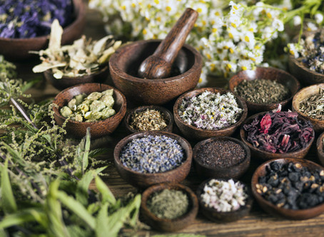 The what, why and how of Herbal medicine