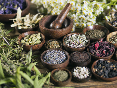 The Best Herbs You Should Use Right Now for Natural, Healthy, Hair Growth (Part 1)