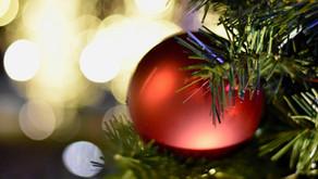 Klidné Vánoce a jenom lepší 2021!