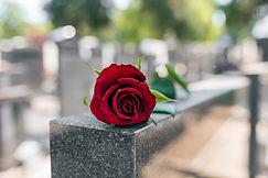 Gedenkteken Rode roos