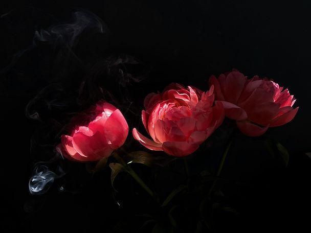Dramatic Flowers