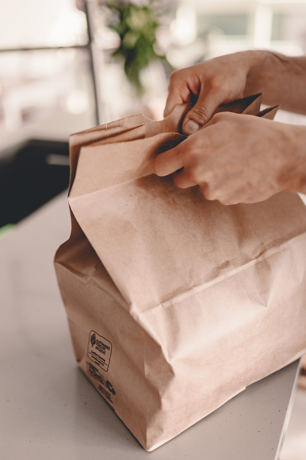 Take Away Bag