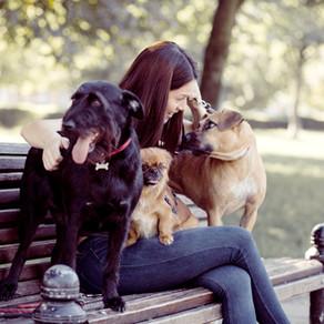 Best Dog Parks in LA