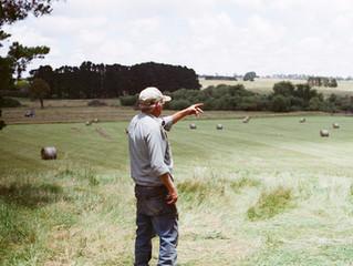 AGRICULTURE - L'Assemblée adopte un texte visant à protéger la rémunération des agriculteurs
