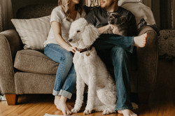 Famille avec animaux