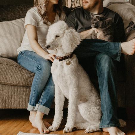 CAN A SENIOR DOG STILL BENEFIT FROM PET INSURANCE
