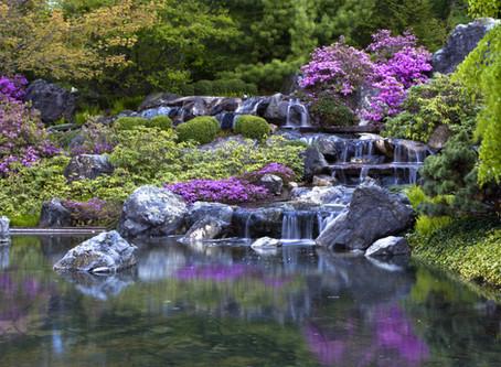 日本は世界の水資源消費国だという真実