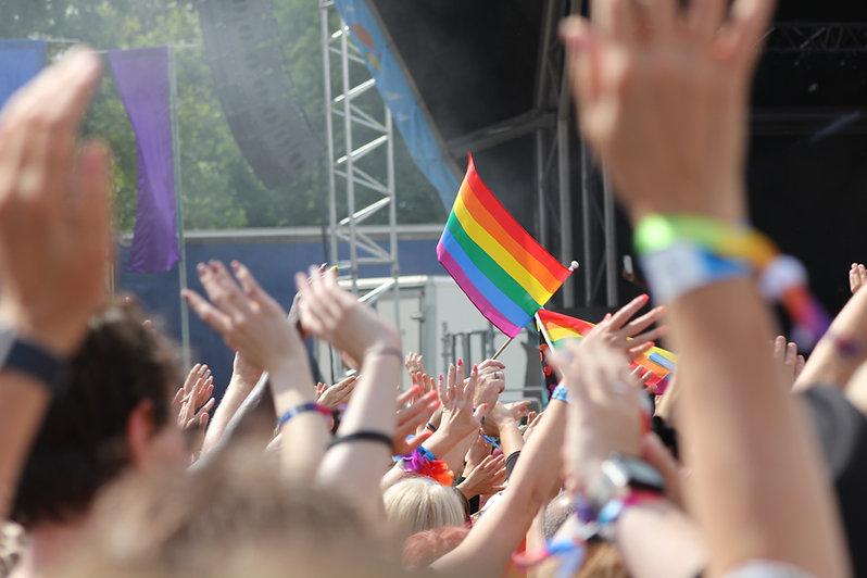LGBTQ Crowd